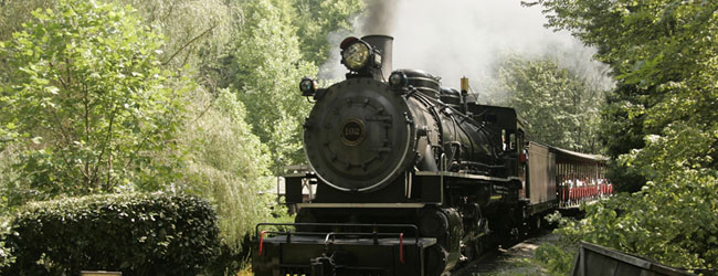 View of Dollywood Express Steam Engine Train Roaring down the tracks in Dollywood wide